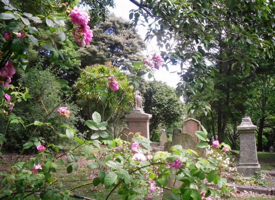 Rose Garden_Symonds Street Cemetery.jpg