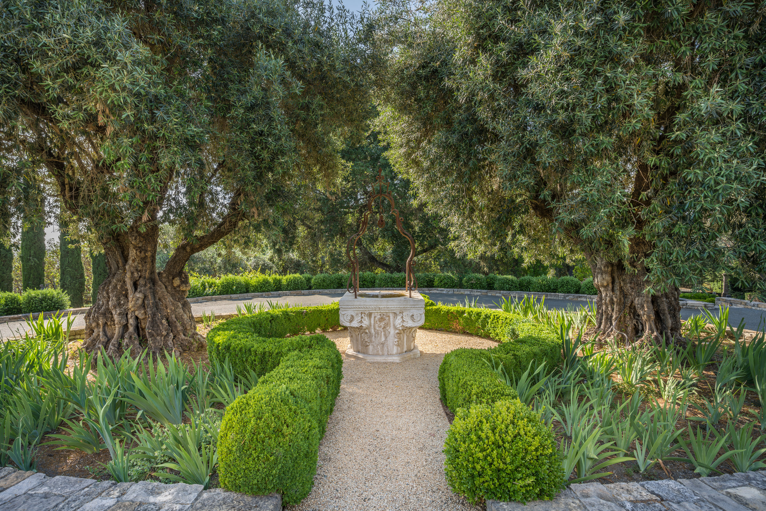 Ancient olive trees and historic well are the centerpiece of the entrance.