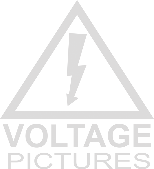 voltage pictures.png