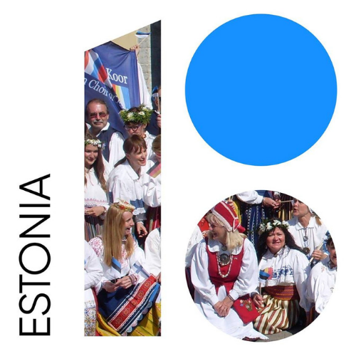 estonia 100.png