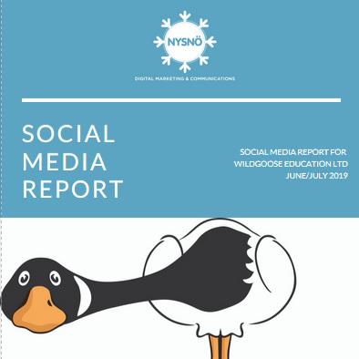 Monthly bespoke Social Media Report