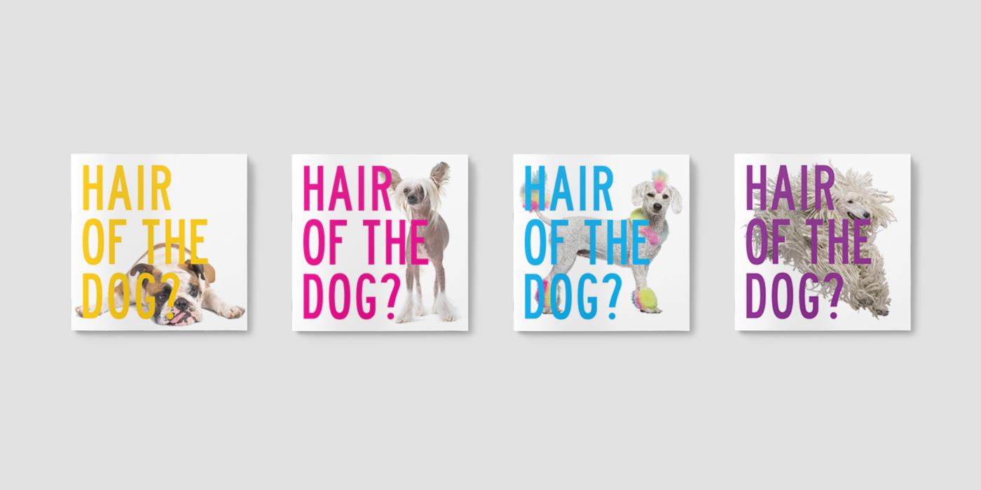 Hair_Dog_Cover_Portfolio6.png