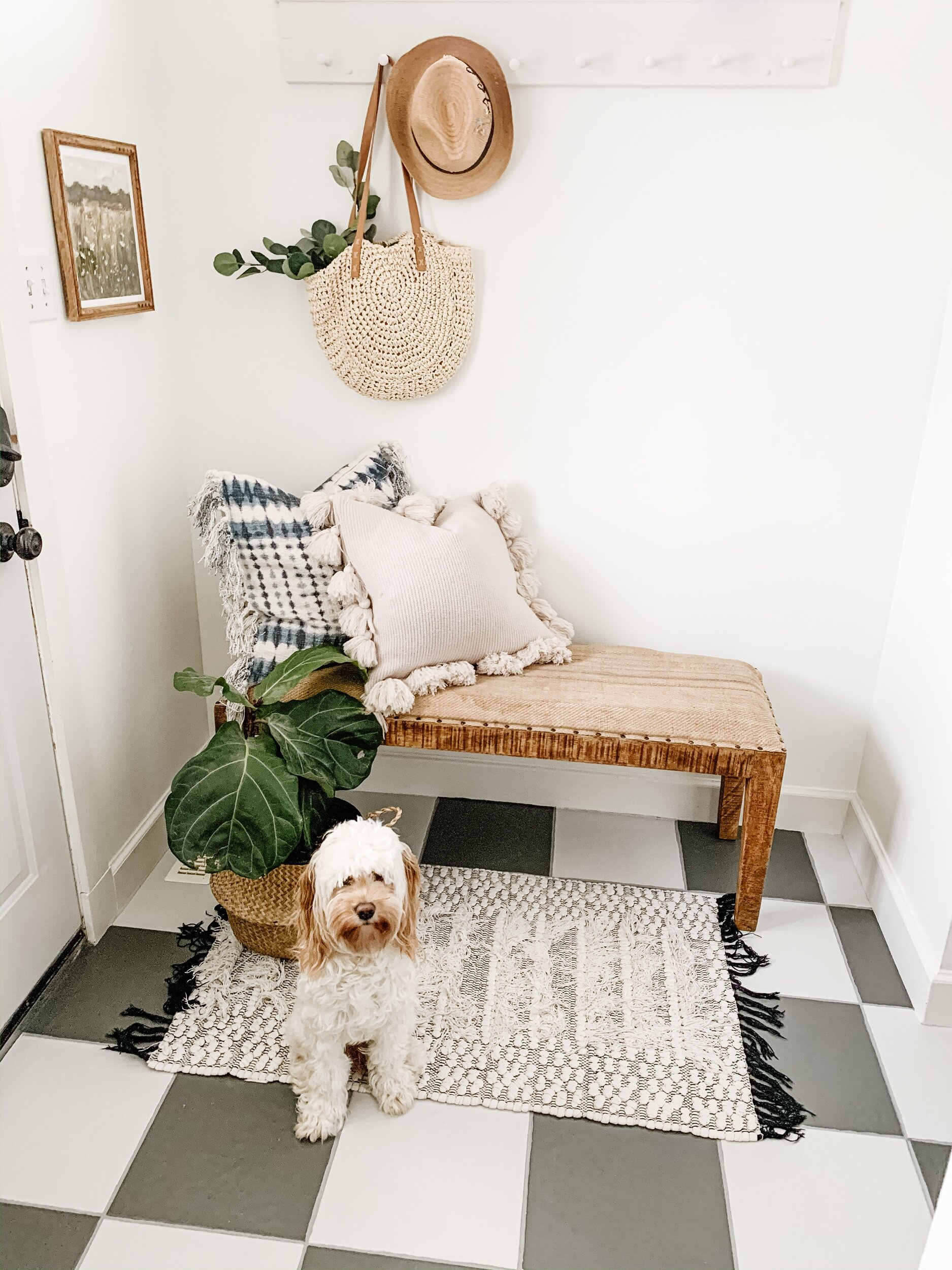 this is a photo of a dog on a rug in a back entryway with painted tile floors