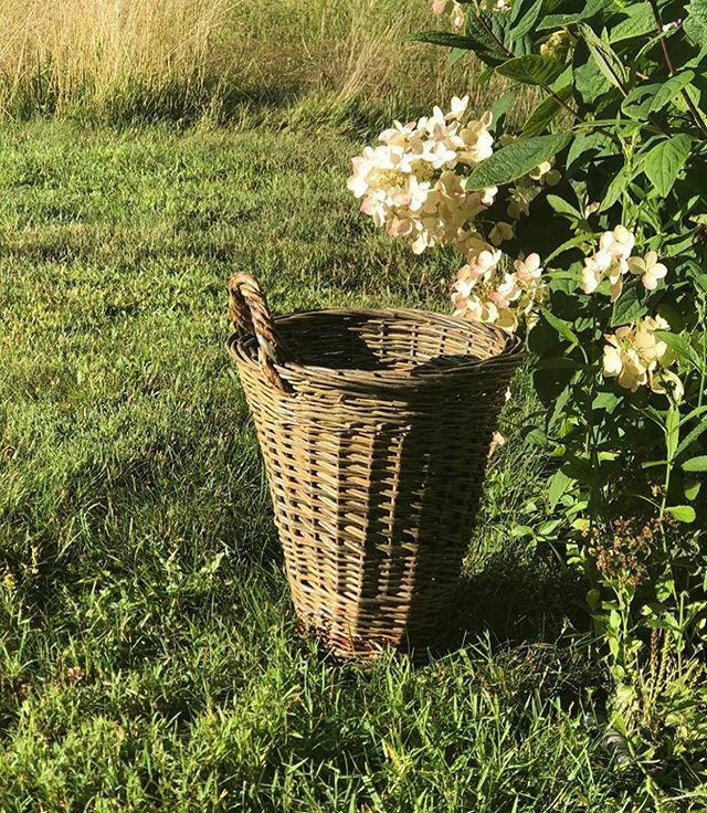 Wonderful to see your @100mainst finds at use in your daily life! Here is an image @grayantiques shared of her @willowvalefarm basket she picked up last week when she visited the shop! Stop in this weekend to find more basket styles and many other items. #100mainartisans