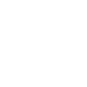 camera-icon-white.png