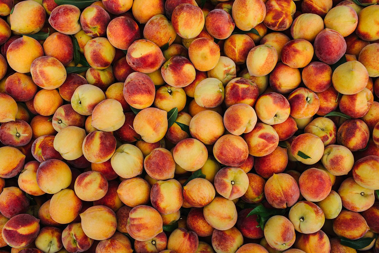 pearsonfarm_GACOI_FINAL_0002.jpg