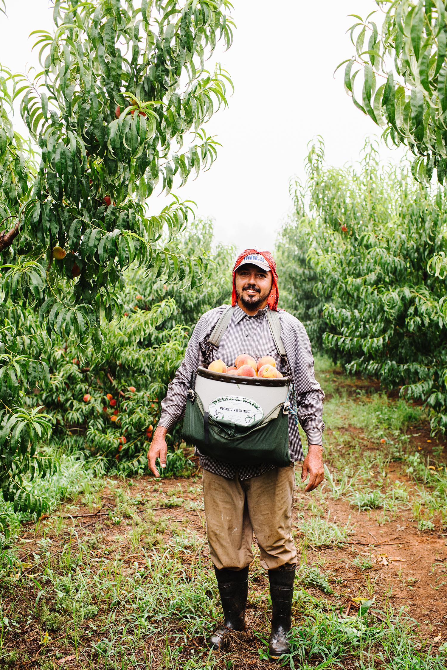 pearsonfarm_GACOI_FINAL_0018.jpg