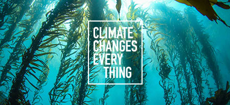 A platform to raise awareness about hopeful climate change solutions.