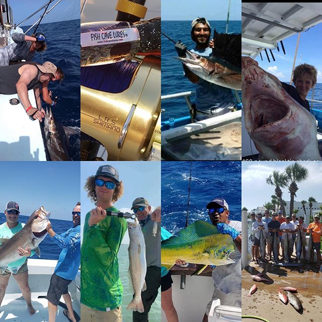 Holy Chit. Lots of Fishing Frenzy Fotos for the 2020 contest! Nice pics!