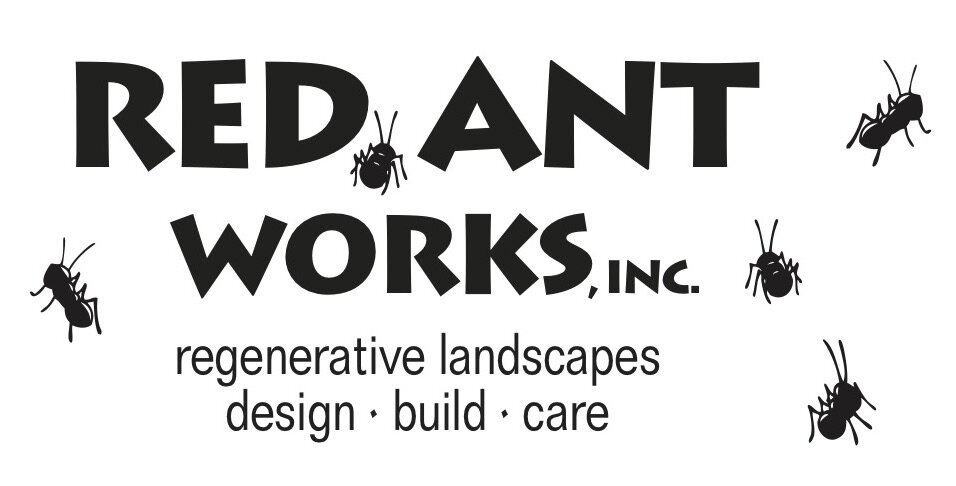 red ant logo.jpg