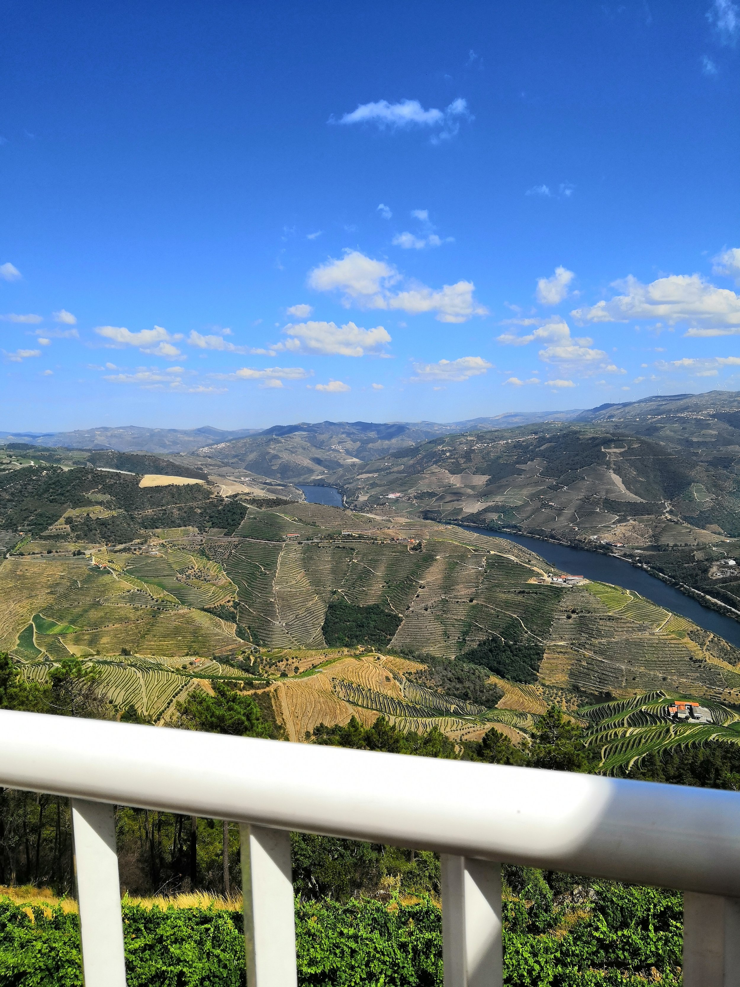Wednesday May 6, 2020 - Breakfast.Day trip to the Douro Valley (wine region).Dinner.Overnight @ hotel.