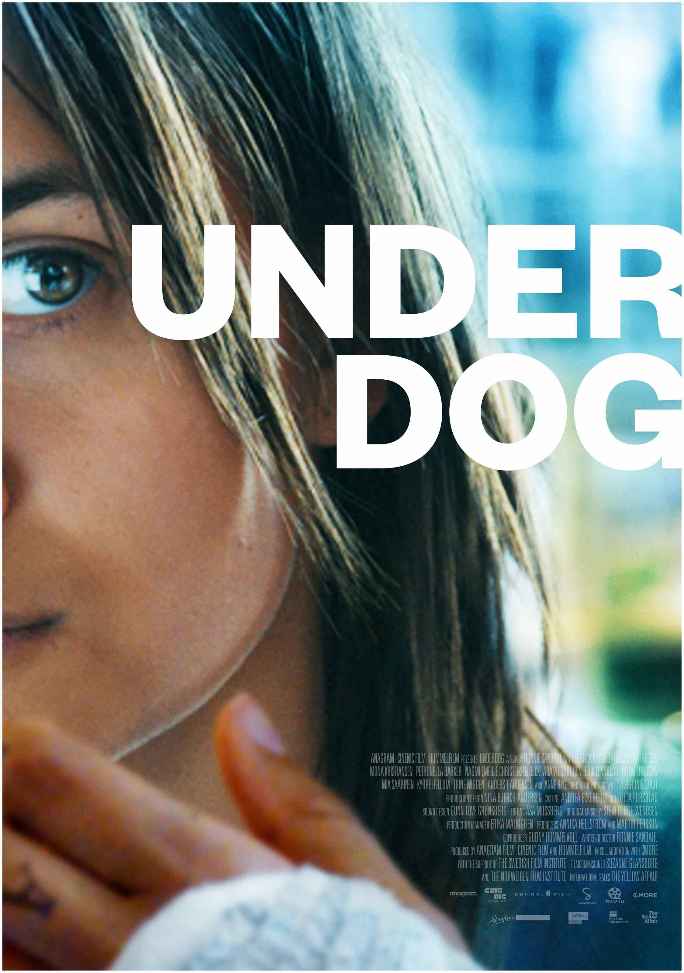 Underdog_70x100_kjs15_sm.jpg