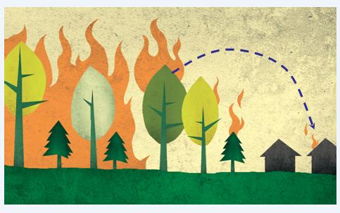 Wildfire MitigationLand ManagementTrail Construction -