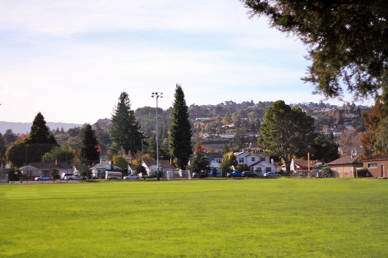 Burton+Park+Field.jpg