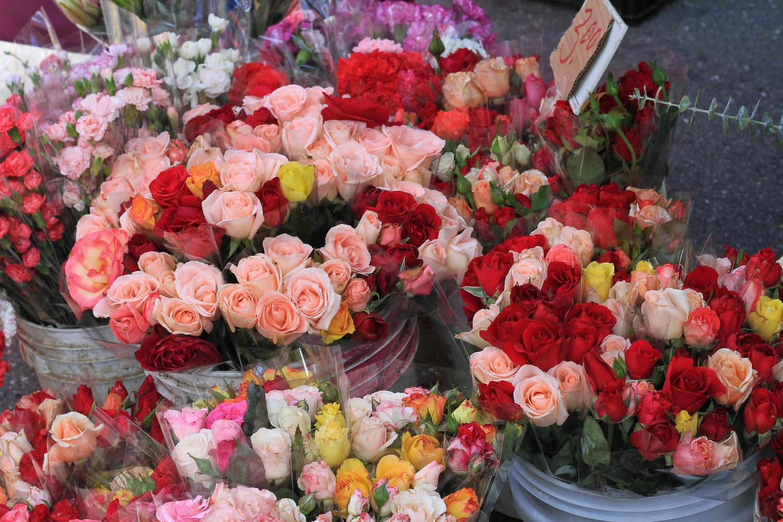 San+Carlos+Famer's+Market+Flower.jpg