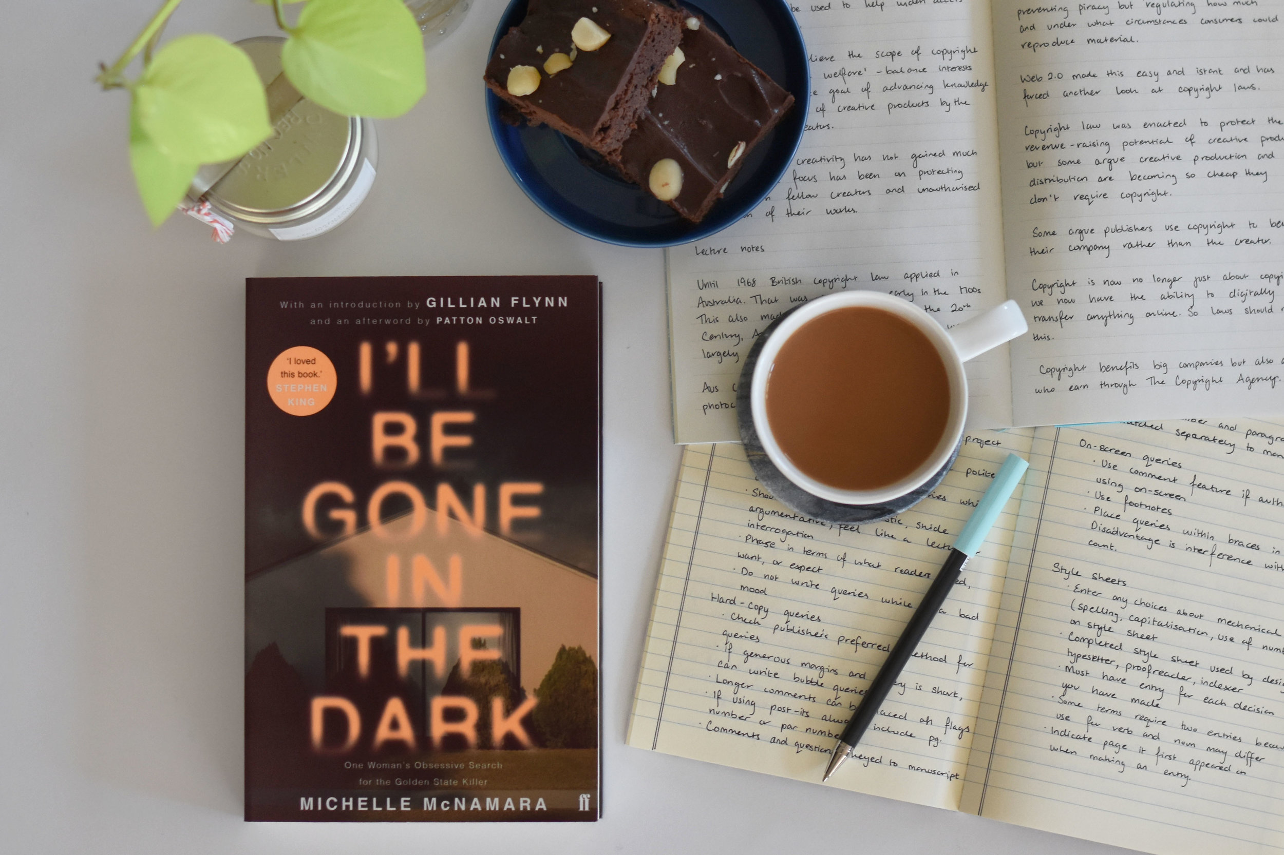 Can true crime be ethical and entertaining? Michelle McNamara's I'll Be Gone in the Dark is a superb example of how it can be.