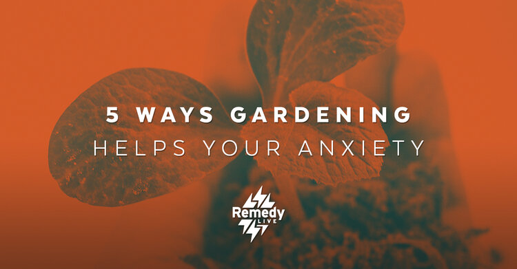 5 Ways Gardening helps your Anxiety