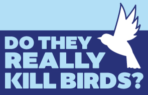 text reads 'do they really kill birds'