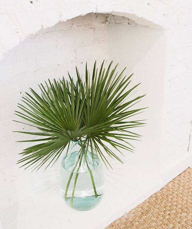 Palm perfection 🌴⁠@fabofbuckhead⁠ ⁠ ⁠ ⁠ .⁠ .⁠ .⁠ #contentcreation #socialmediamarketing #socialmediamanagement #petitejoys #flashesofdelight #feedfeed #beautifulcuisines #thatsdarling #inmykitchen #theeverygirl⁠ #atlgirlgang #fabofbuckhead⁠