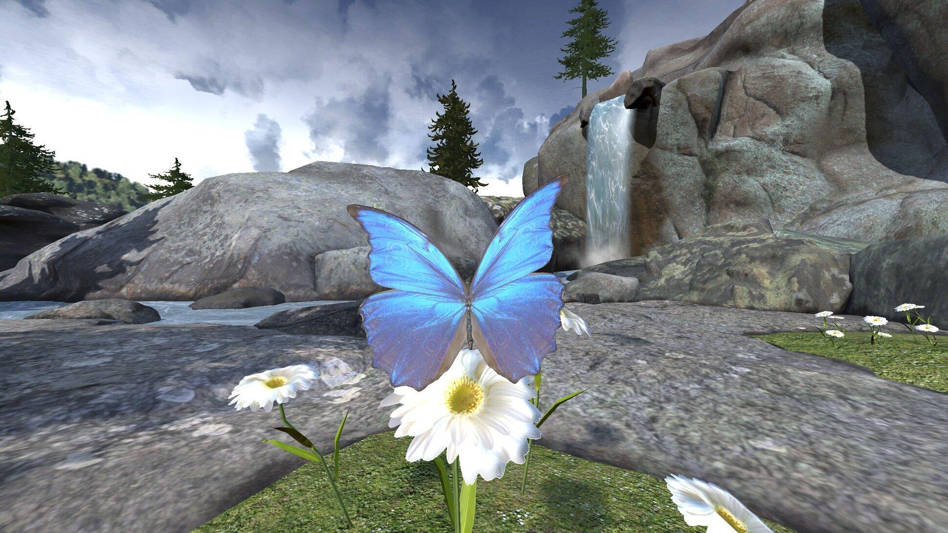 AuroraMindfulness_Butterfly.jpg
