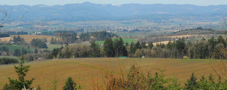 willamette_valley_03.jpg