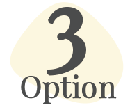 option 3.png