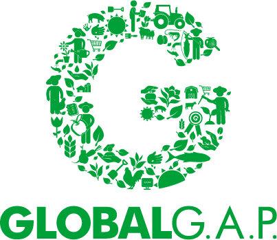 G_Logo_green_RGB.jpg