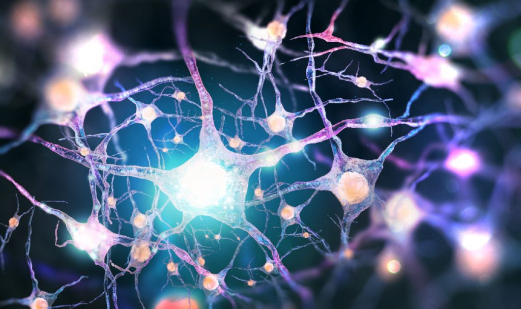 20180619-neurons-brain-shutterstock-36esjw5dftza0h4vtg9wcg.jpg