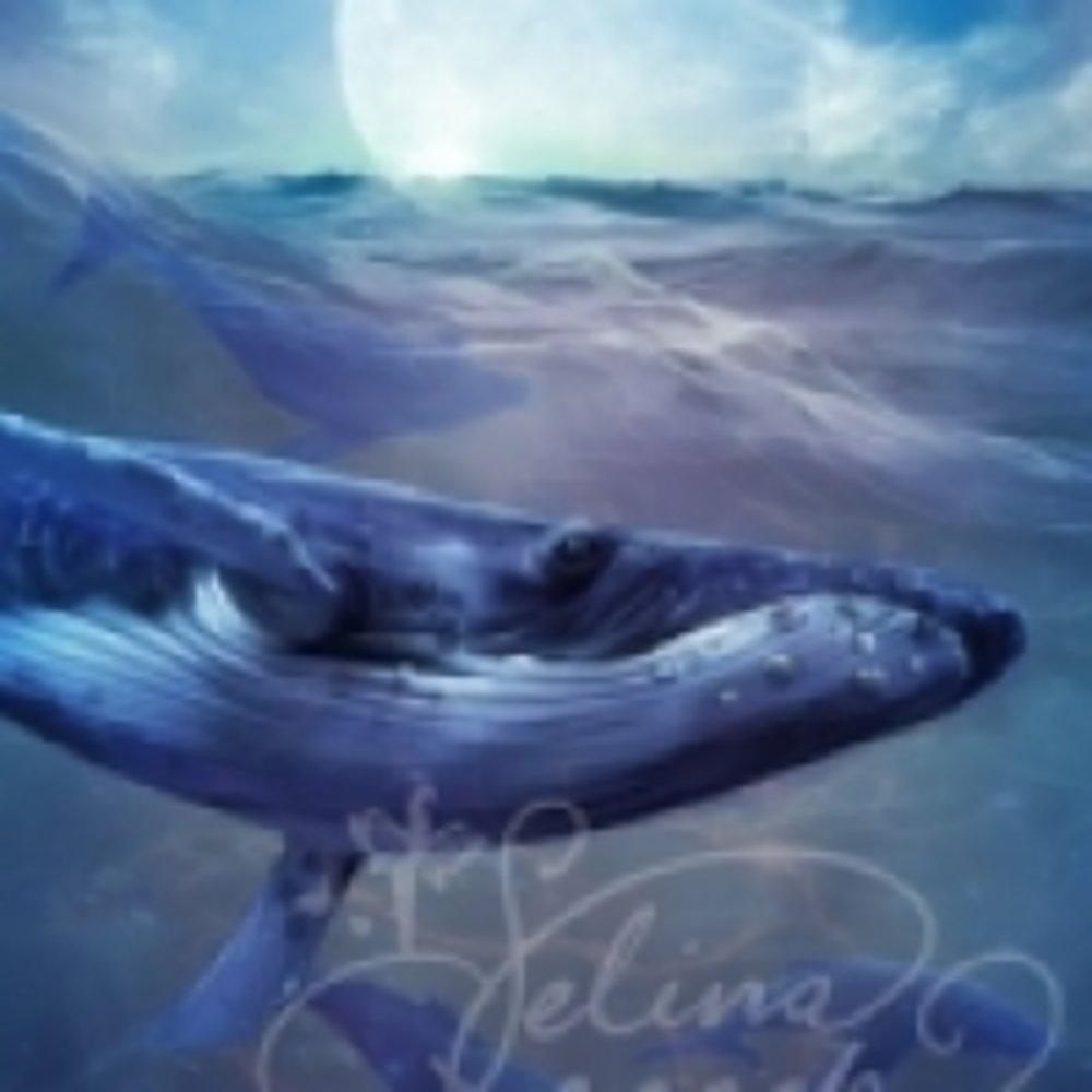 whale_magic.jpg