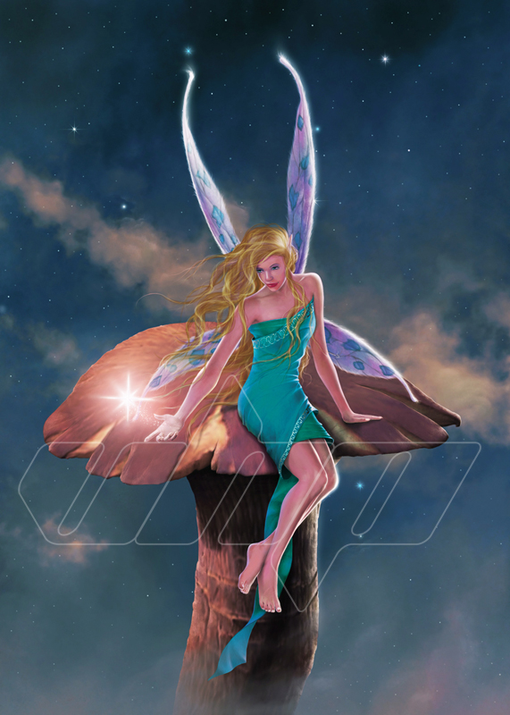 F-001+A+Fairy's+Wish.jpg
