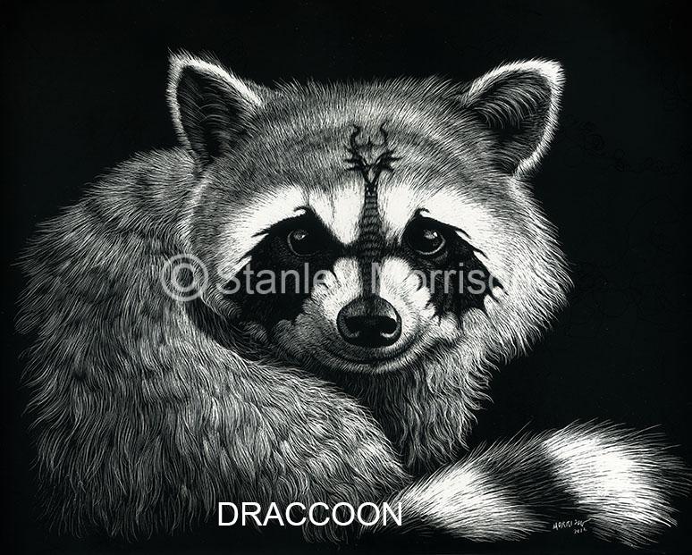 Draccoon.jpg