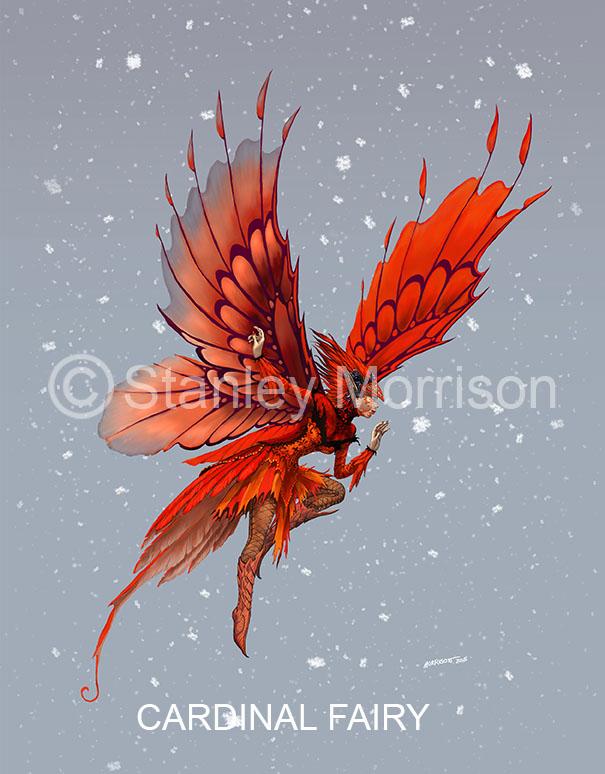 Cardinal+Fairy.jpg