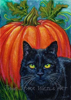 black-cat-and-pumpkin.jpg