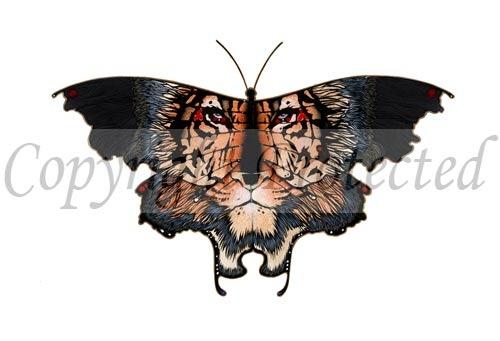 taw-124---tigris.50120542_large.jpg