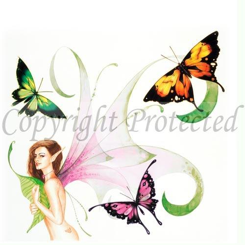 taw-136-butterfly-charmer.19581234_large.jpg