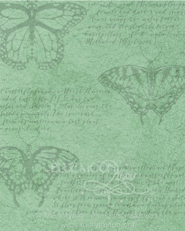 LEPIDOPTERA PATTERN by MARY LAYTON