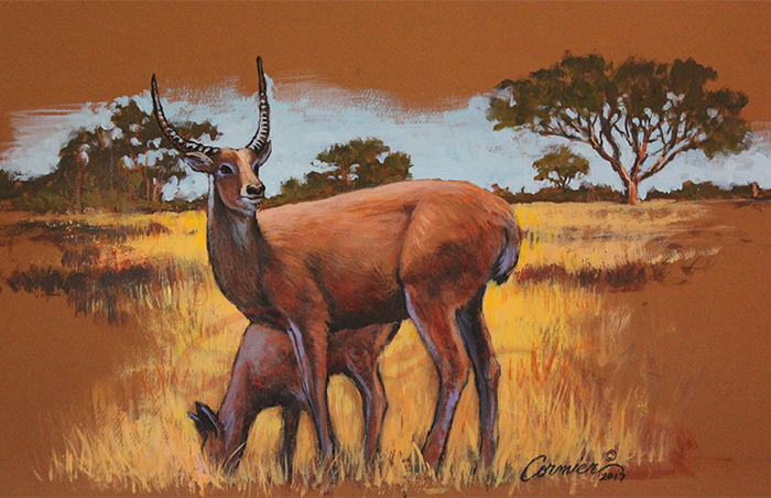 Mixed-media-exotic-Deer.png
