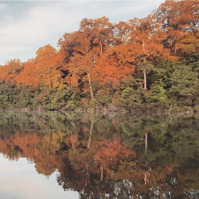 """I go to nature every day for inspiration in the day's work."" –Frank Lloyd Wright⠀⠀⠀⠀⠀⠀⠀⠀⠀ ⠀⠀⠀⠀⠀⠀⠀⠀⠀ .⠀⠀⠀⠀⠀⠀⠀⠀⠀ .⠀⠀⠀⠀⠀⠀⠀⠀⠀ .⠀⠀⠀⠀⠀⠀⠀⠀⠀ .⠀⠀⠀⠀⠀⠀⠀⠀⠀ .⠀⠀⠀⠀⠀⠀⠀⠀⠀ #freelancelife⠀⠀⠀⠀⠀⠀⠀⠀⠀ #calledtobecreative⠀⠀⠀⠀⠀⠀⠀⠀⠀ #creativeladydirectory⠀⠀⠀⠀⠀⠀⠀⠀⠀ #communityovercompetition⠀⠀⠀⠀⠀⠀⠀⠀⠀ #creativepreneur⠀⠀⠀⠀⠀⠀⠀⠀⠀ #solopreneur⠀⠀⠀⠀⠀⠀⠀⠀⠀ #branding⠀⠀⠀⠀⠀⠀⠀⠀⠀ #rebranding⠀⠀⠀⠀⠀⠀⠀⠀⠀ #webdesigner⠀⠀⠀⠀⠀⠀⠀⠀⠀ #squarespacewebdesigner⠀⠀⠀⠀⠀⠀⠀⠀⠀ #squarespacewebdesign⠀⠀⠀⠀⠀⠀⠀⠀⠀ #workfromanywhere⠀⠀⠀⠀⠀⠀⠀⠀⠀ #workspace⠀⠀⠀⠀⠀⠀⠀⠀⠀ #doitfortheprocess⠀⠀⠀⠀⠀⠀⠀⠀⠀ #girlboss⠀⠀⠀⠀⠀⠀⠀⠀⠀ #bossbabes⠀⠀⠀⠀⠀⠀⠀⠀⠀ #slowentrepreneur⠀⠀⠀⠀⠀⠀⠀⠀⠀ #mycreativebiz⠀⠀⠀⠀⠀⠀⠀⠀⠀ #getbacktodesign⠀⠀⠀⠀⠀⠀⠀⠀⠀ #femalefreelancer⠀⠀⠀⠀⠀⠀⠀⠀⠀ #smallbusinesscreatives⠀⠀⠀⠀⠀⠀⠀⠀⠀ #williamsburg⠀⠀⠀⠀⠀⠀⠀⠀⠀ #virginia⠀⠀⠀⠀⠀⠀⠀⠀⠀ #kvasirvirtual⠀⠀⠀⠀⠀⠀⠀⠀⠀ #creativesolutions⠀⠀⠀⠀⠀⠀⠀⠀⠀ #creativeentrepreneur"
