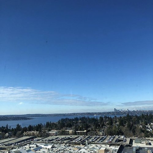Friday meeting views! 👏🏻🙌🏻 While the Pacific Northwest is looking more like spring, check out where our sharpies are headed next on our Events page! Link in bio. #technicalmarketing #meetingviews #workinghard #3sharp #3sharplife #3sharpies #technicalsales #technicaldemos #techdemo #bellevuewa #bellevue #bellsquare #lincolnsquare