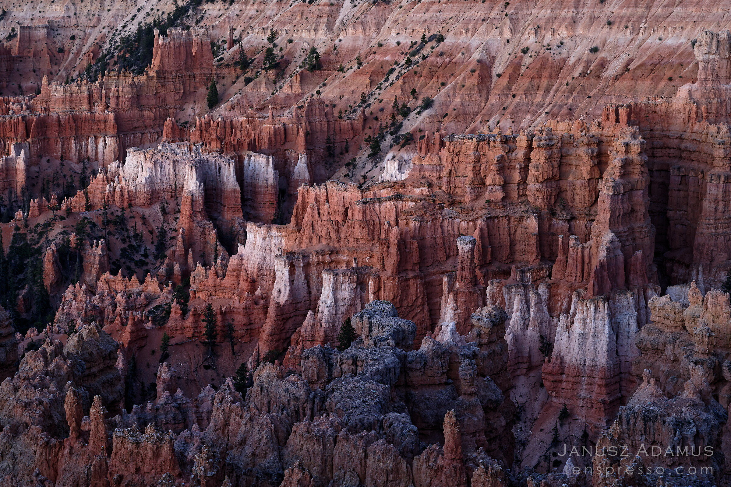 Bryce Canyon before sunrise