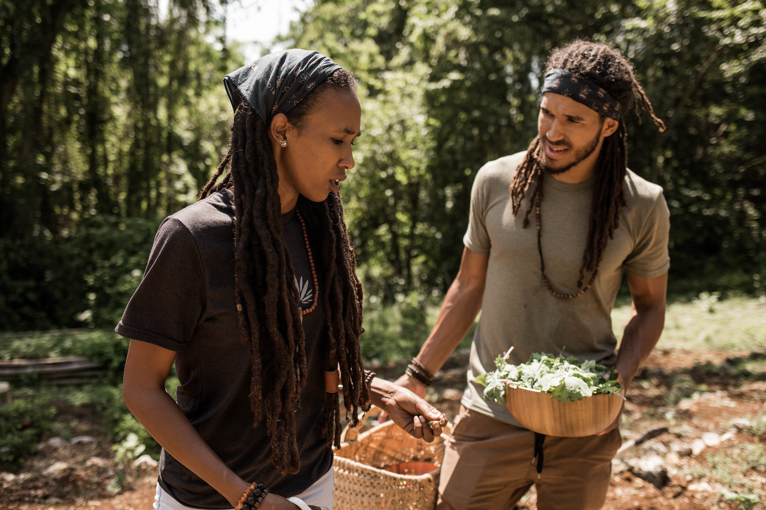 Teach - Stroll through our farm while learning about the history of the property, observe the flora and fauna in their natural habitat, and engage in stimulating discussions about sustainability, earth care and wellness.