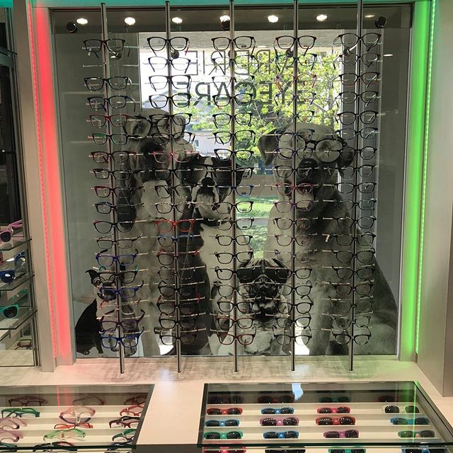 Graphics of dogs wearing glasses mounted on the children's frame wear display at Airdrie Eyecare Centre.  Graphic design by Devon Wallace. #outerorbitcreative #optometry #eyewear #clinicdesign #cabinetry #graphicdesign #interiordesign #spaceplanning #millwork @wallace_built @outerorbit