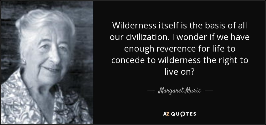quote-wilderness-itself-is-the-basis-of-all-our-civilization-i-wonder-if-we-have-enough-reverence-margaret-murie-76-62-15.jpg