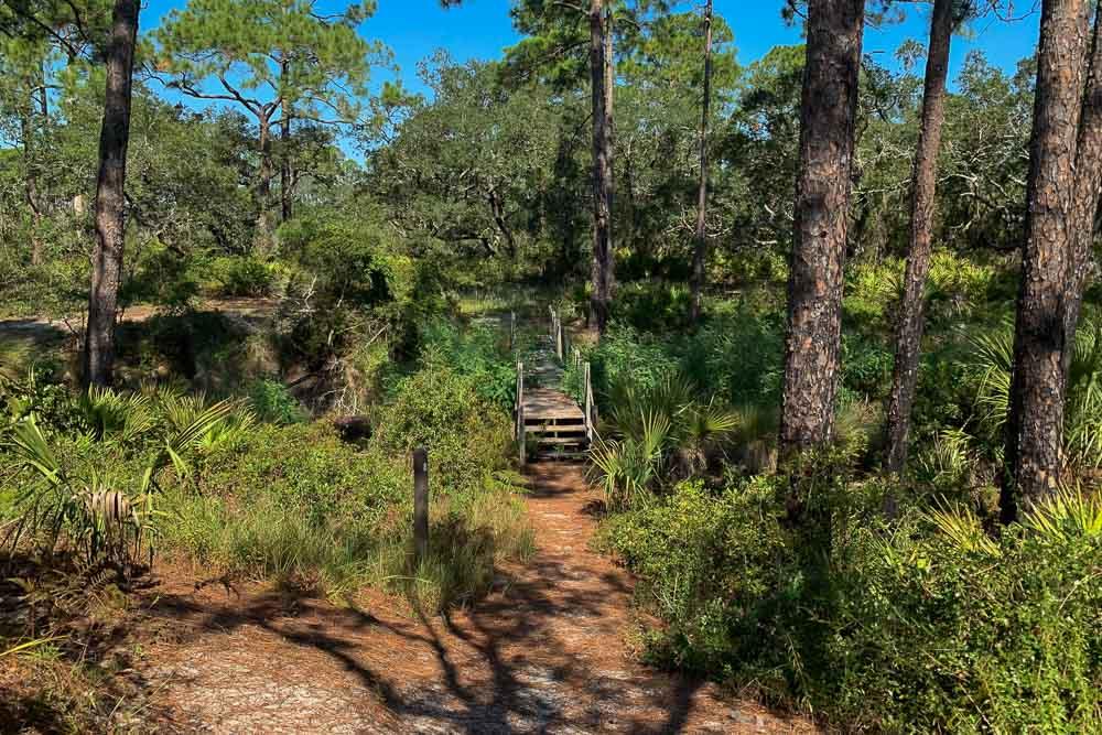 Tower Pond Loop5.jpg
