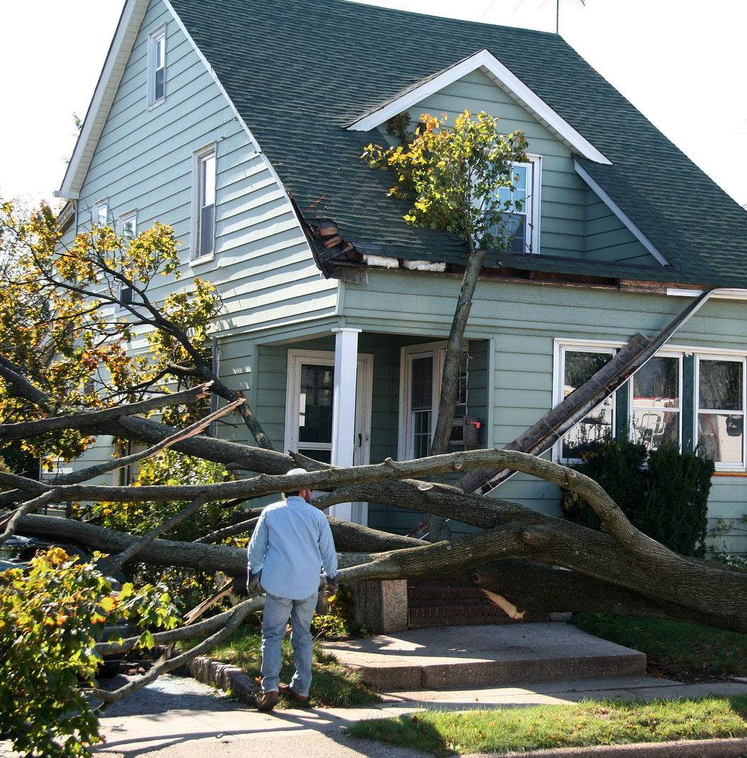 roof-damage-from-fallen-tree.jpg