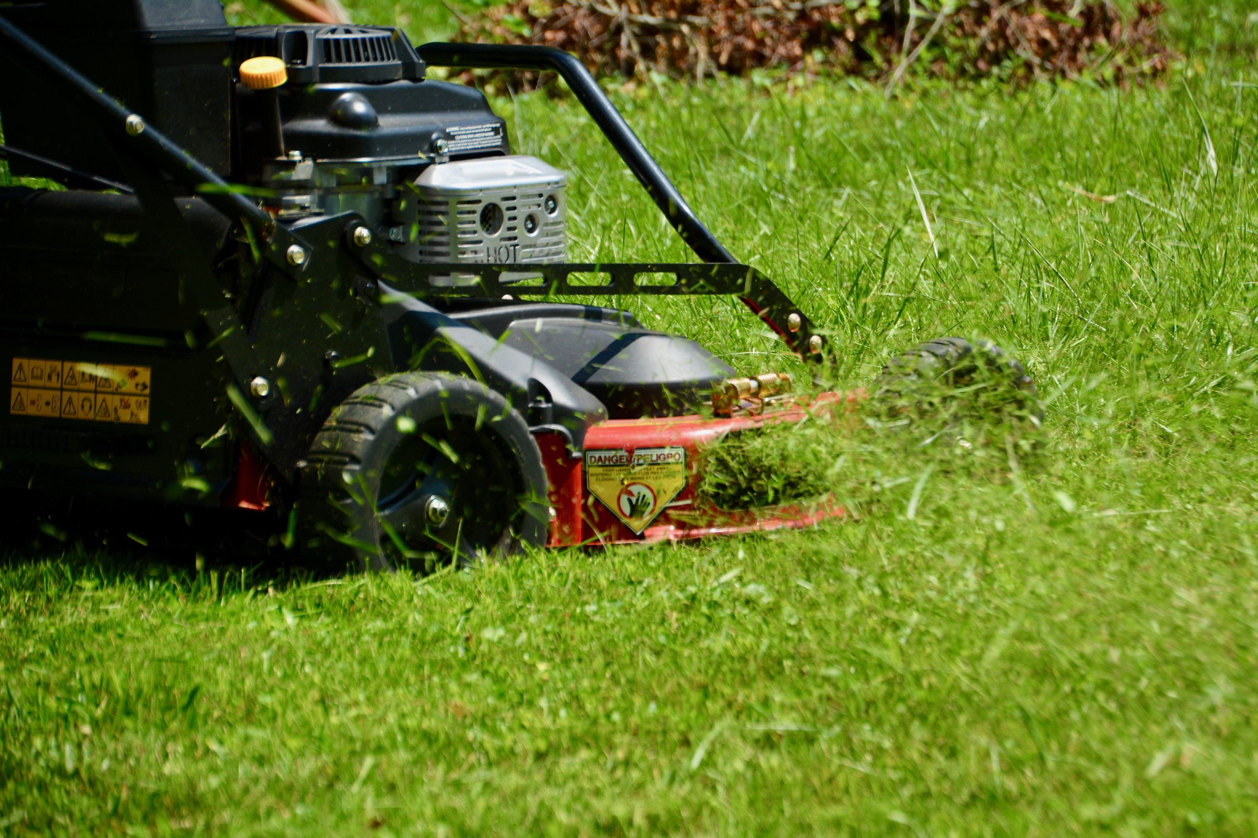 Small mower spraying grass.jpeg