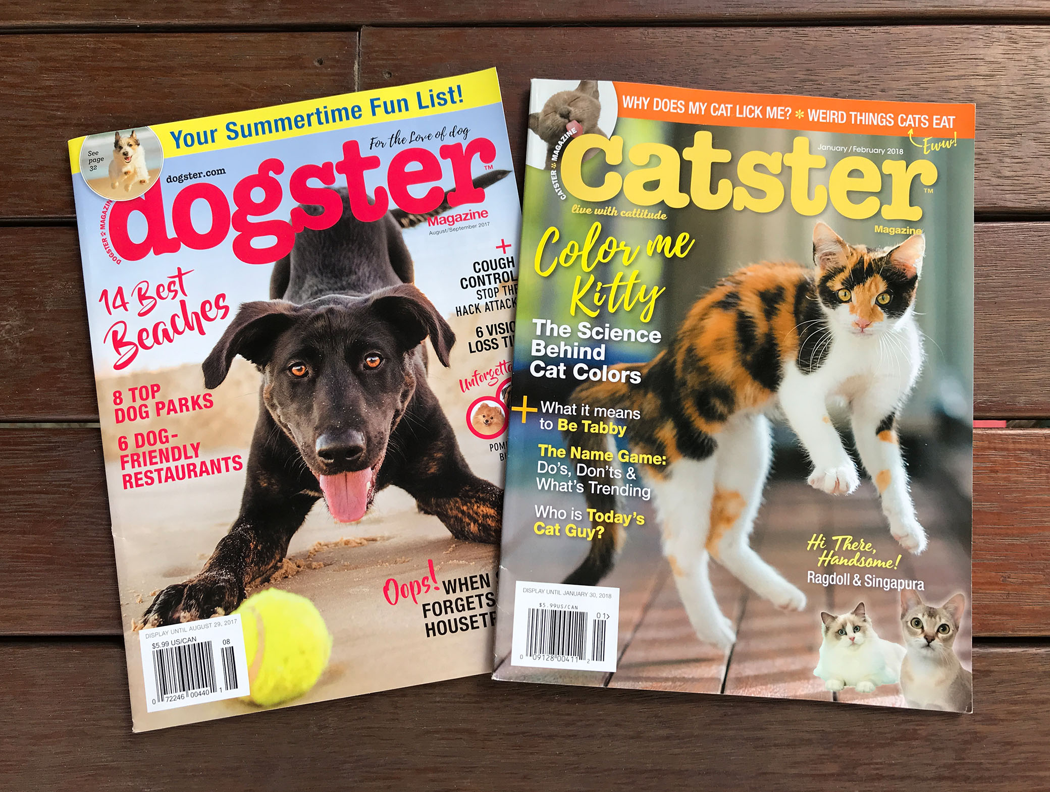 dogster-catster.jpg