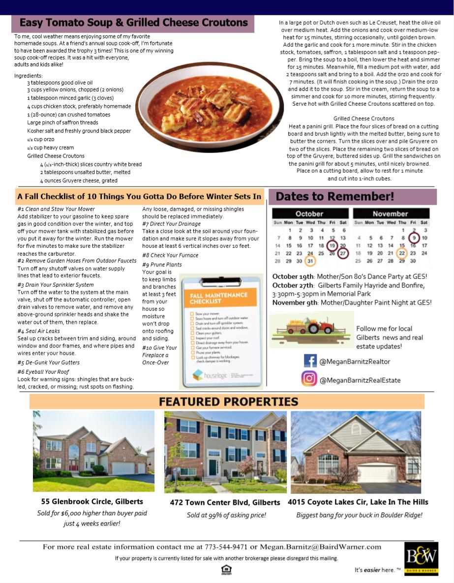 Newsletter for Chicago real estate broker