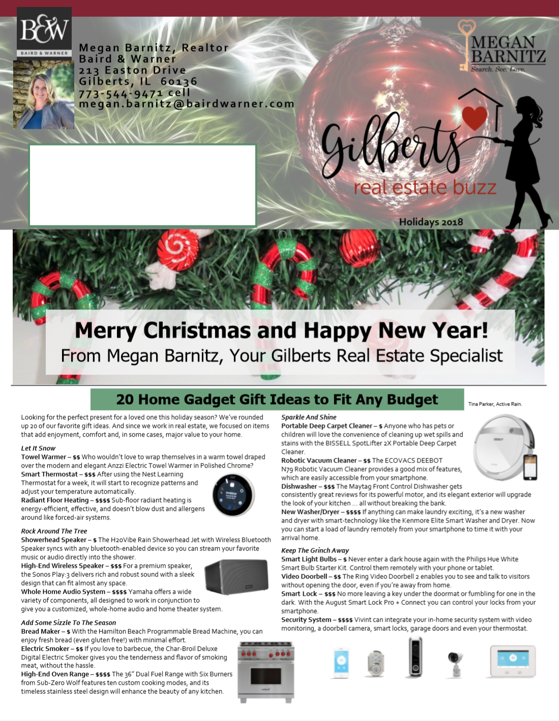 Newsletter for real estate agent in Chicago