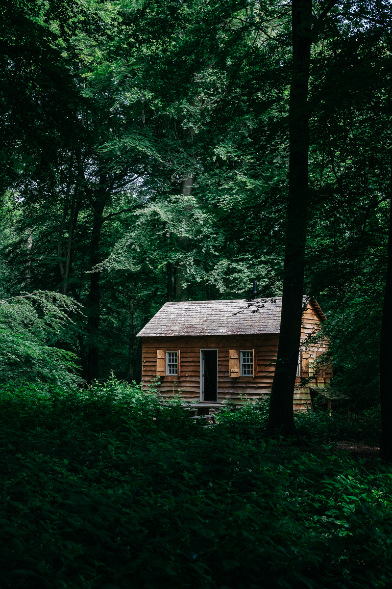 Wood Cabin 2.jpg